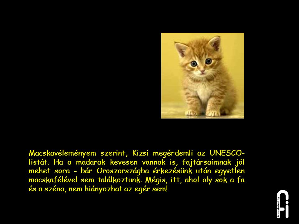 Macskavéleményem szerint, Kizsi megérdemli az UNESCO-listát