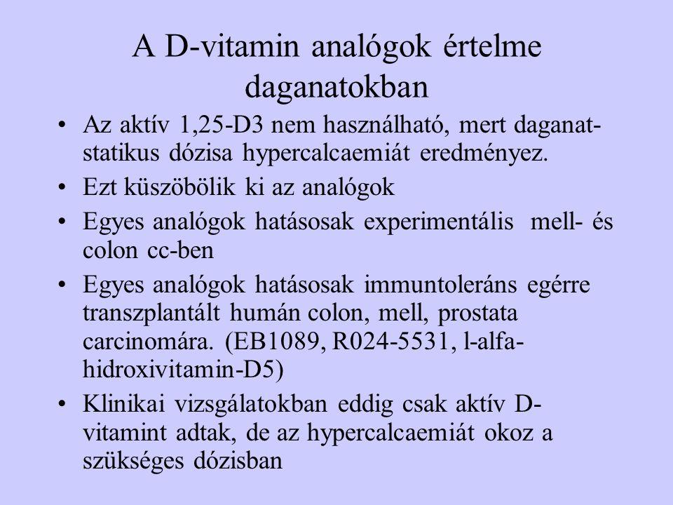 A D-vitamin analógok értelme daganatokban