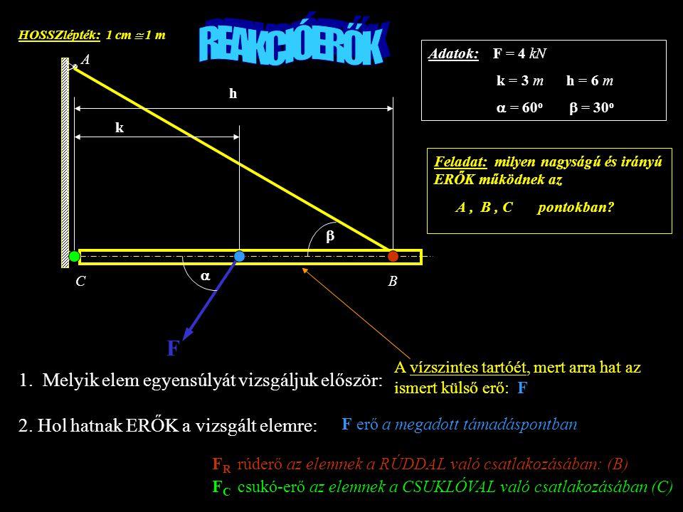 REAKCIÓERŐK F 1. Melyik elem egyensúlyát vizsgáljuk először: