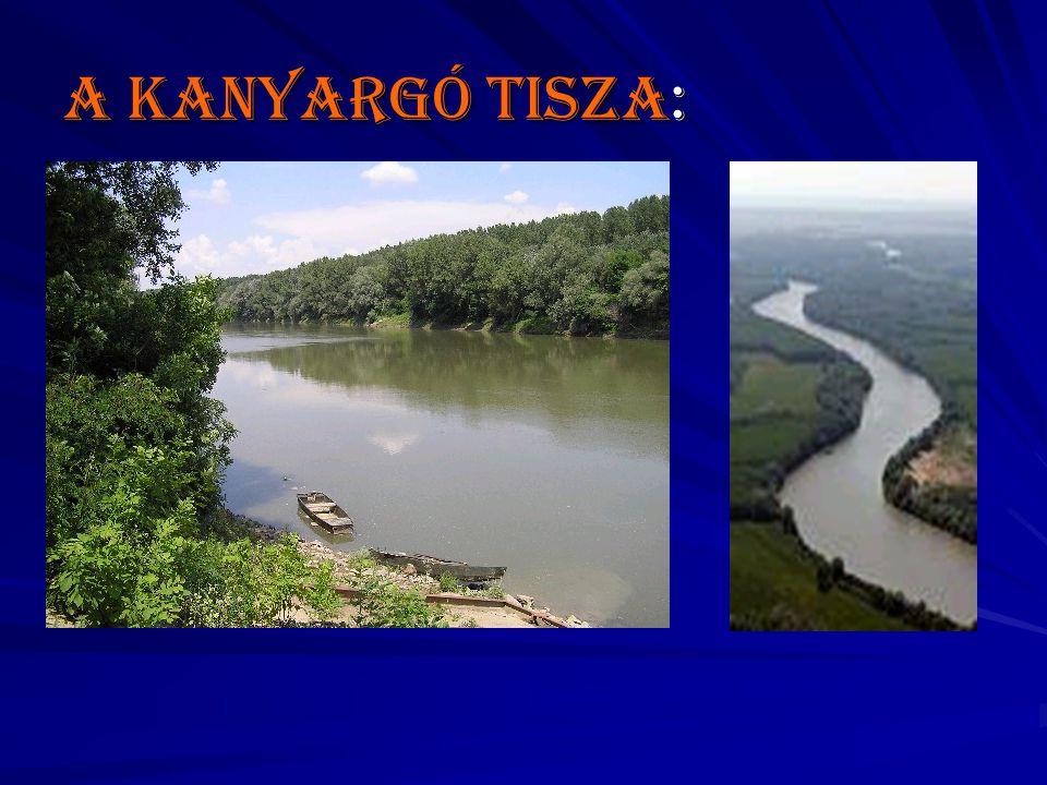 A kanyargó Tisza: