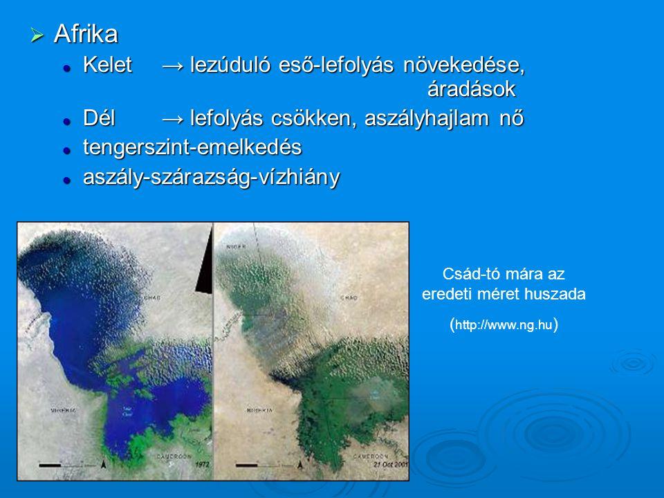 Csád-tó mára az eredeti méret huszada