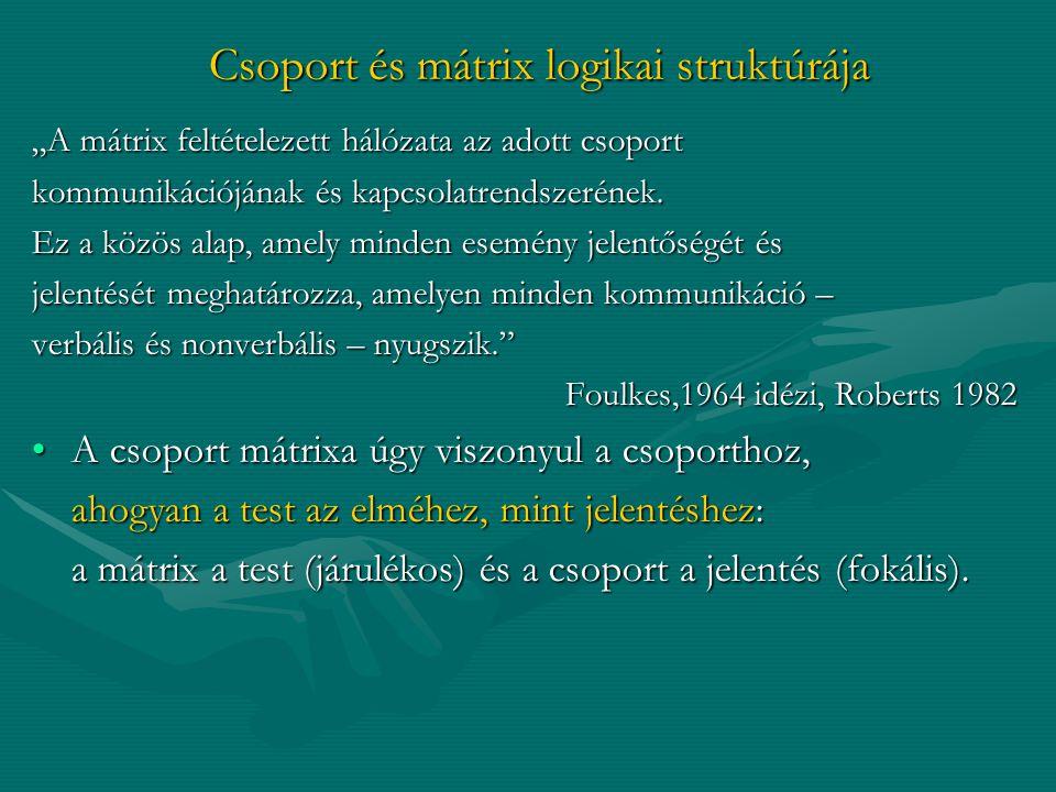 Csoport és mátrix logikai struktúrája