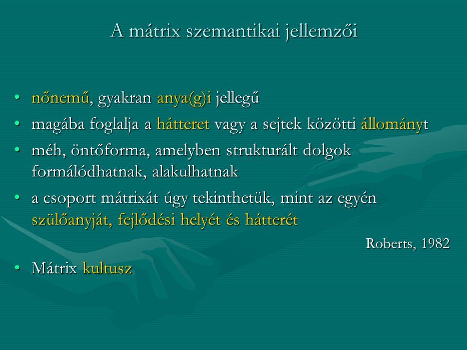 A mátrix szemantikai jellemzői