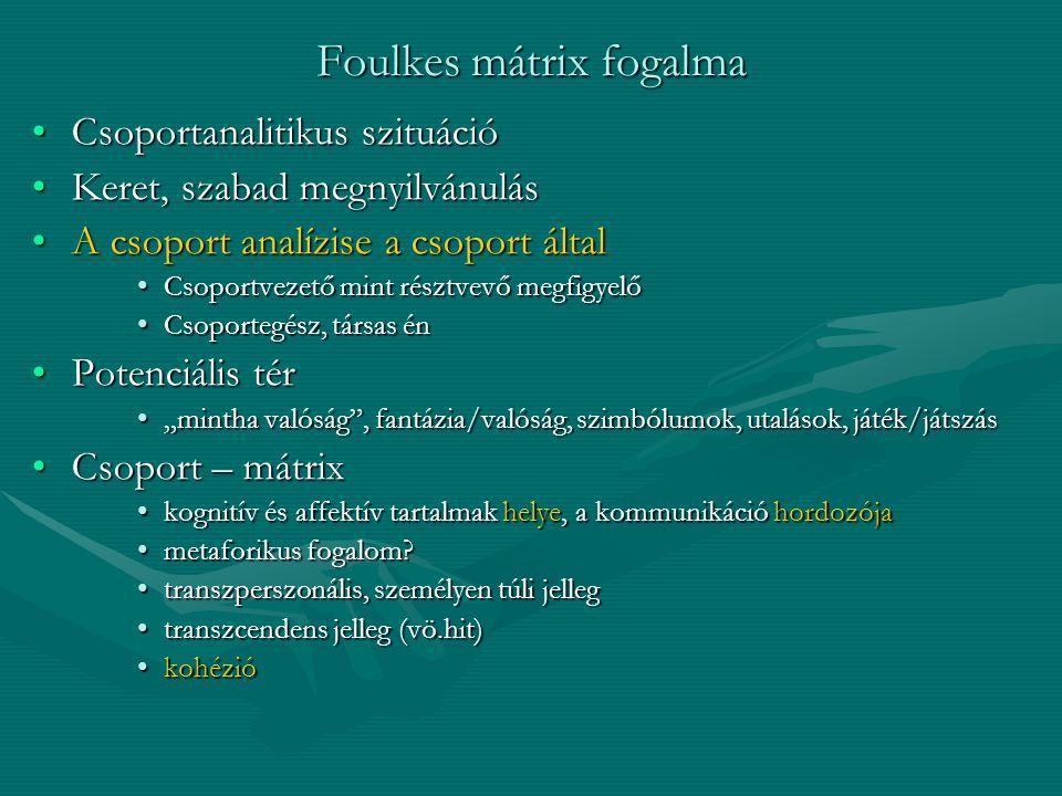 Foulkes mátrix fogalma