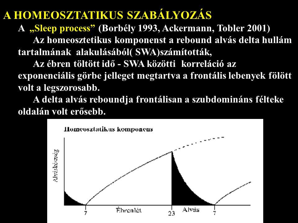 A HOMEOSZTATIKUS SZABÁLYOZÁS