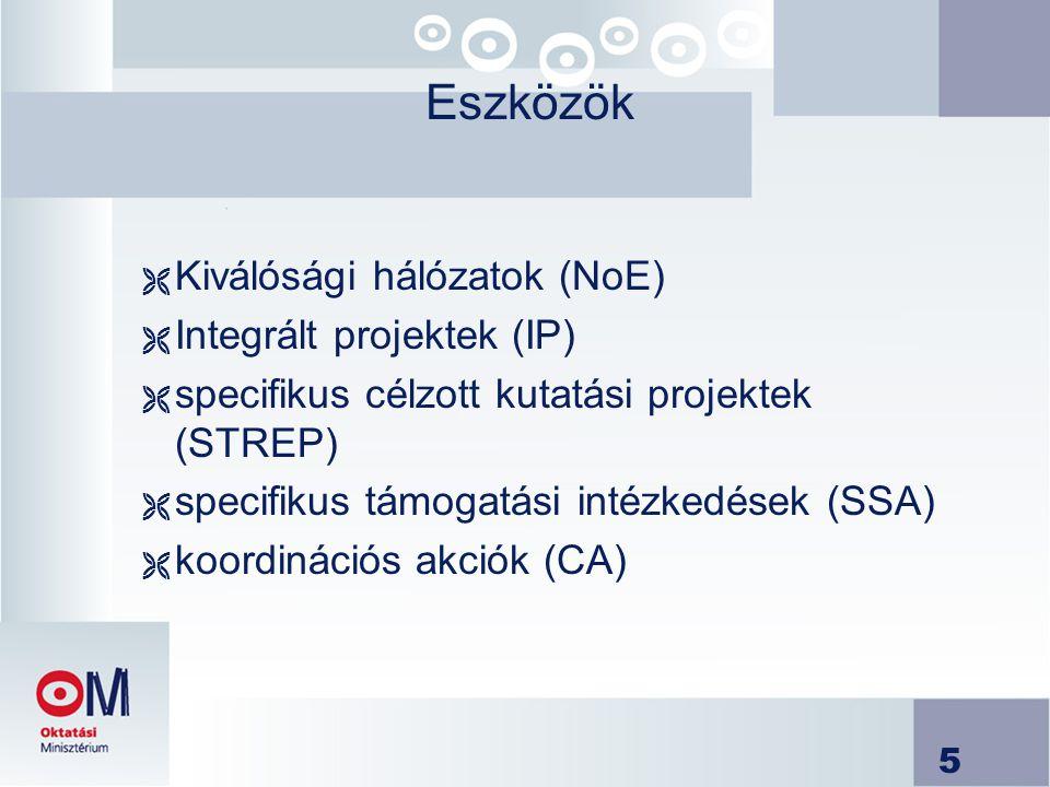 Eszközök Kiválósági hálózatok (NoE) Integrált projektek (IP)