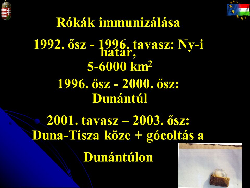Rókák immunizálása 1992. ősz - 1996