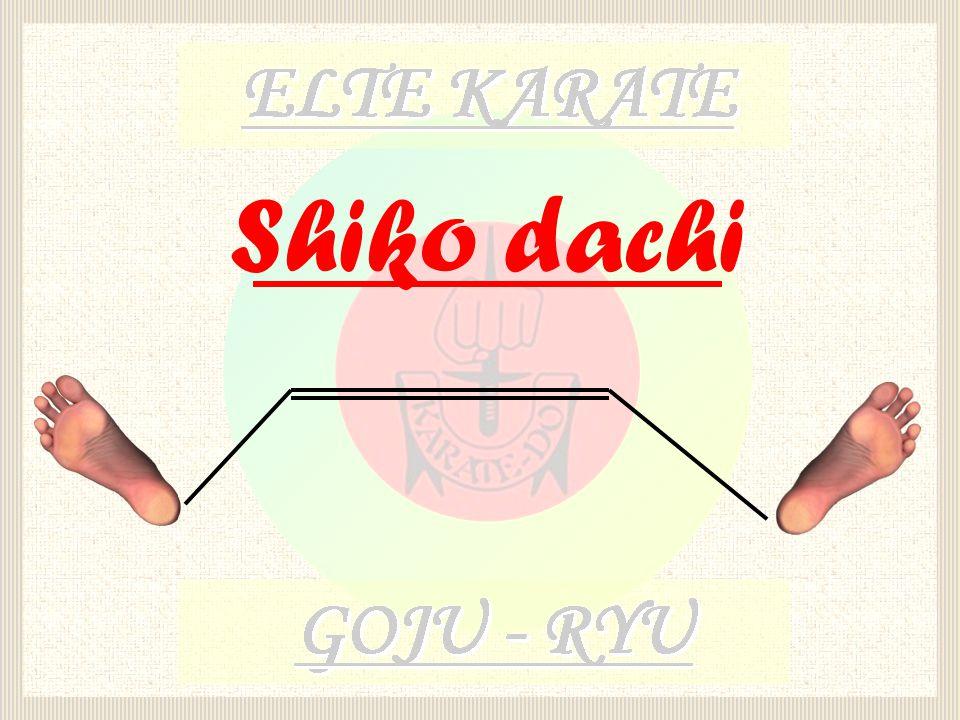 Shiko dachi