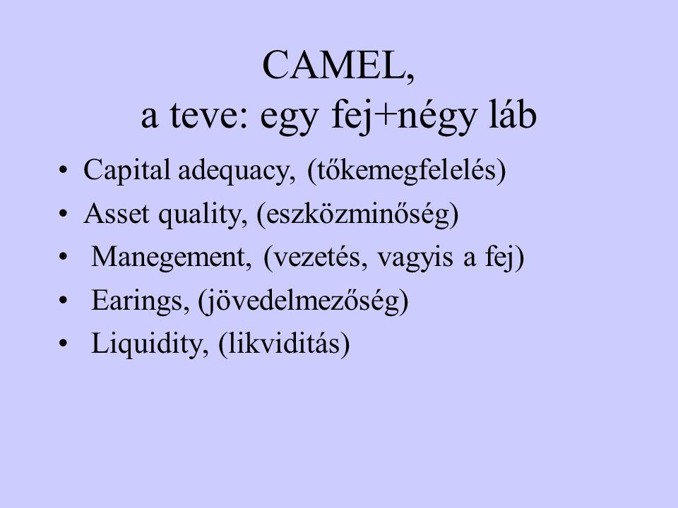 CAMEL, a teve: egy fej+négy láb