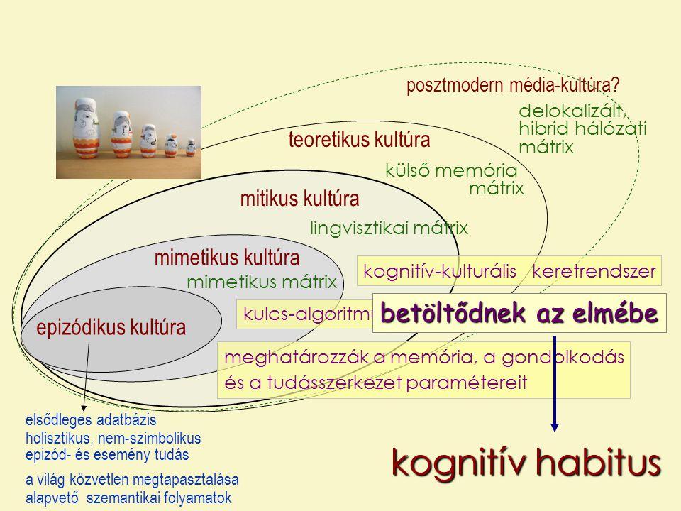 kognitív habitus betöltődnek az elmébe teoretikus kultúra