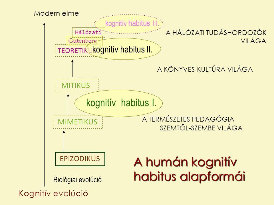 A humán kognitív habitus alapformái