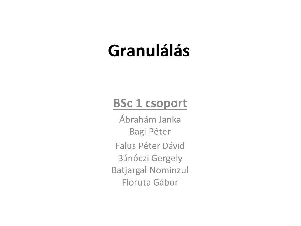 Granulálás BSc 1 csoport Ábrahám Janka Bagi Péter