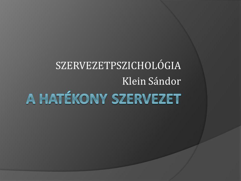 SZERVEZETPSZICHOLÓGIA Klein Sándor