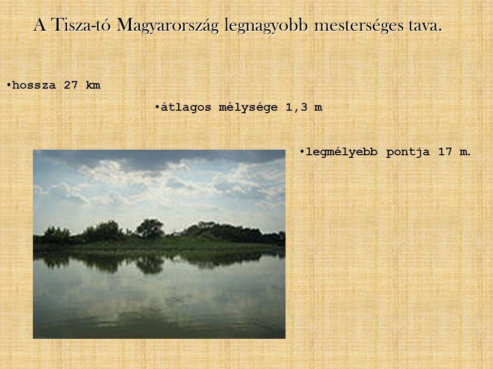 A Tisza-tó Magyarország legnagyobb mesterséges tava.