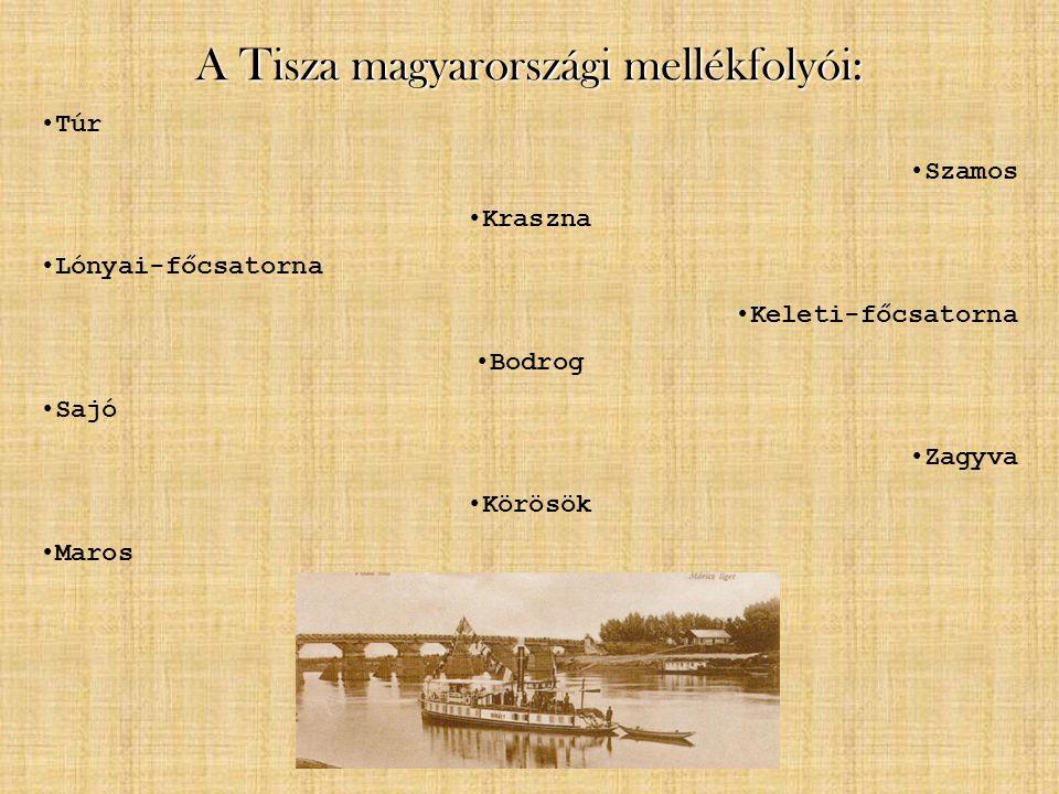 A Tisza magyarországi mellékfolyói:
