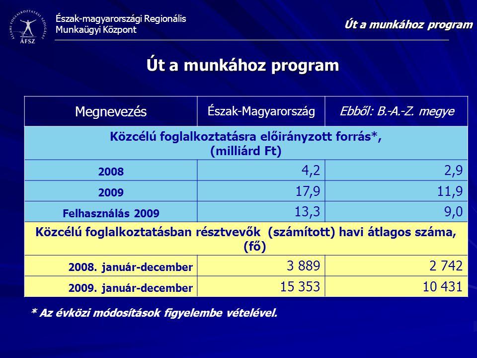 Közcélú foglalkoztatásra előirányzott forrás*,