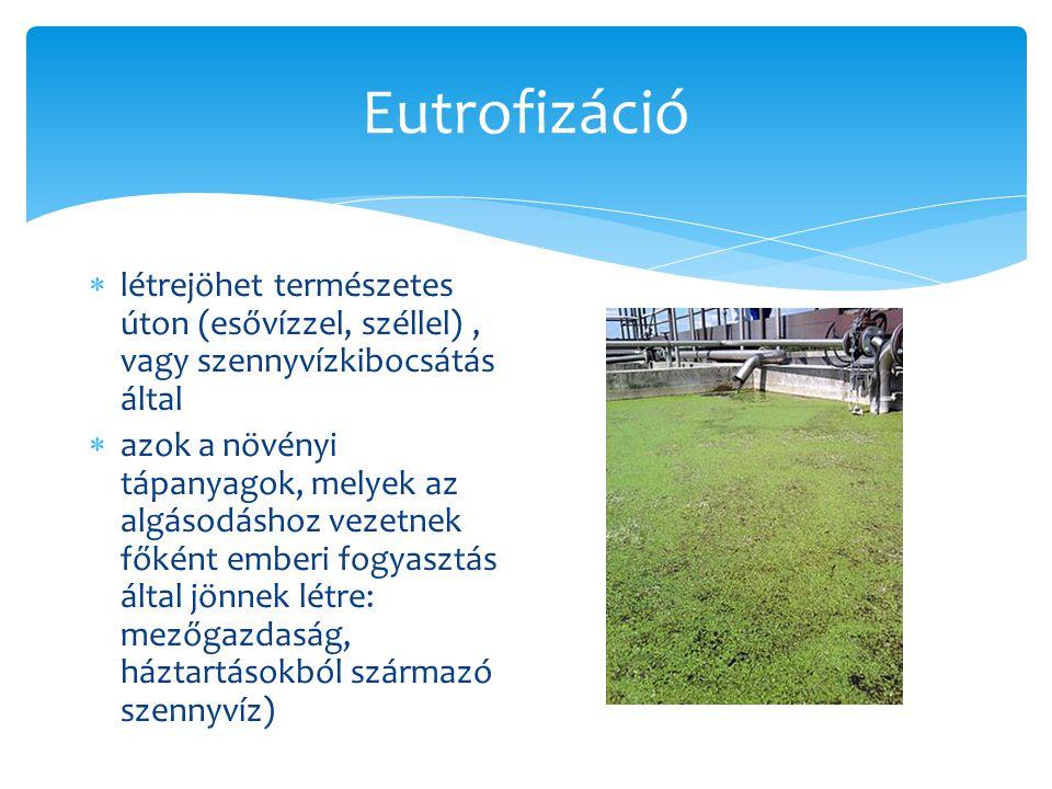 Eutrofizáció létrejöhet természetes úton (esővízzel, széllel) , vagy szennyvízkibocsátás által.
