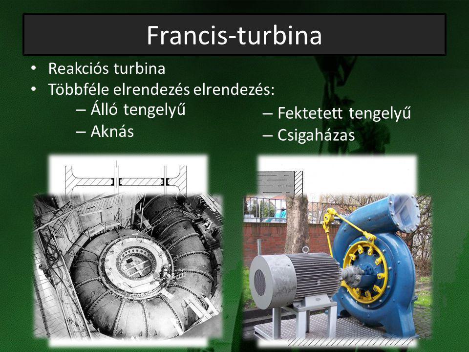 Francis-turbina Álló tengelyű Fektetett tengelyű Aknás Csigaházas