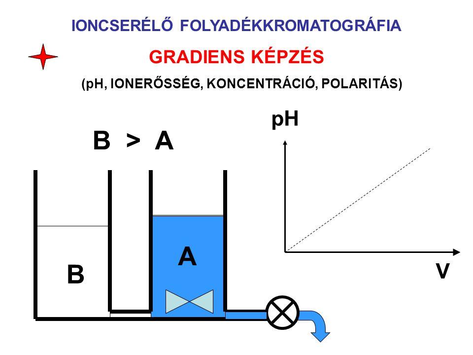 B > A A B pH V GRADIENS KÉPZÉS IONCSERÉLŐ FOLYADÉKKROMATOGRÁFIA