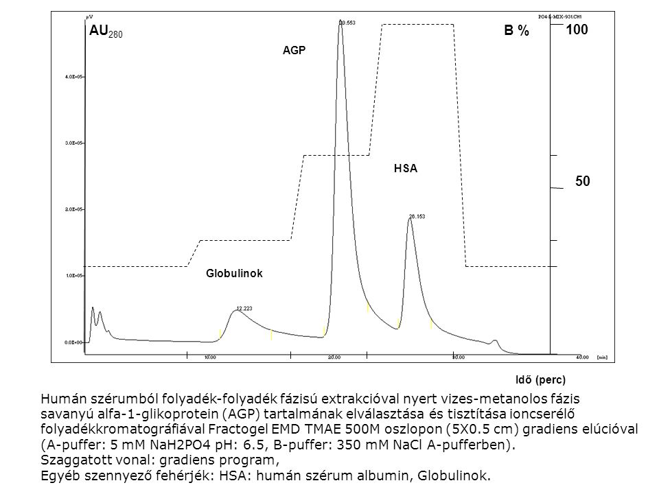Idő (perc) AGP. HSA. Globulinok. B % 100. 50. AU280. Humán szérumból folyadék-folyadék fázisú extrakcióval nyert vizes-metanolos fázis.