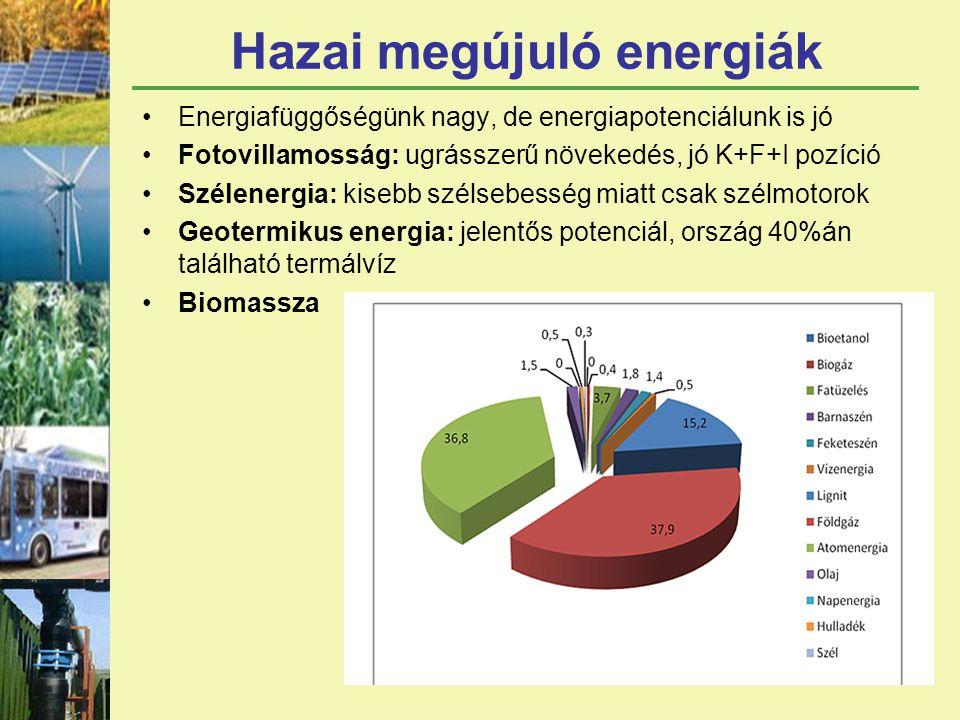 Hazai megújuló energiák