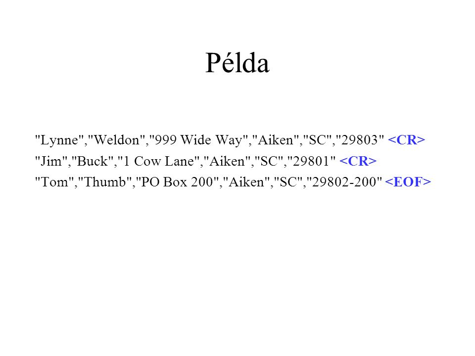 Példa Lynne , Weldon , 999 Wide Way , Aiken , SC , 29803 <CR>