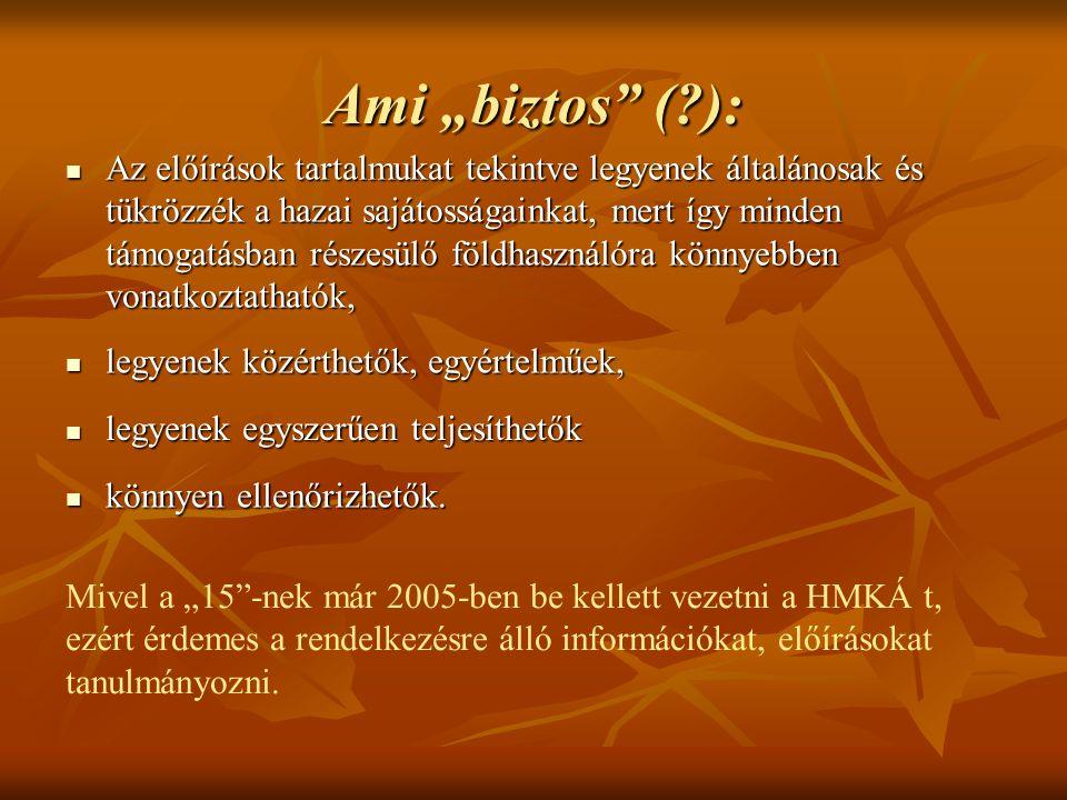 "Ami ""biztos ( ):"
