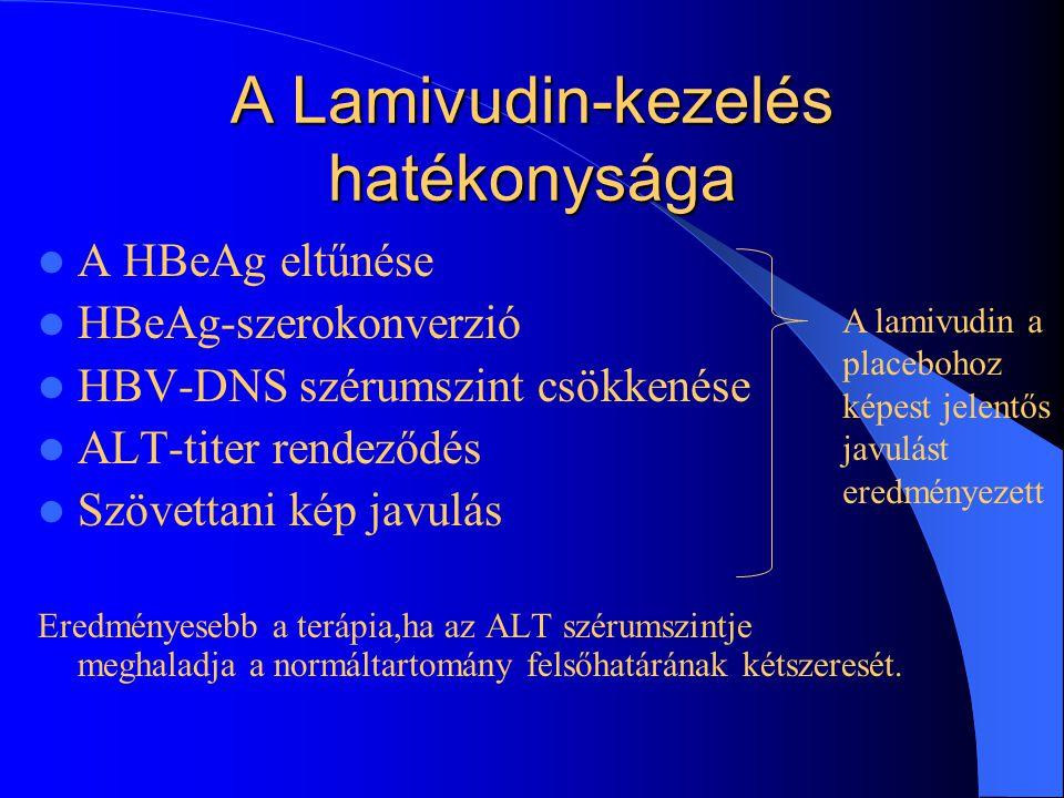 A Lamivudin-kezelés hatékonysága