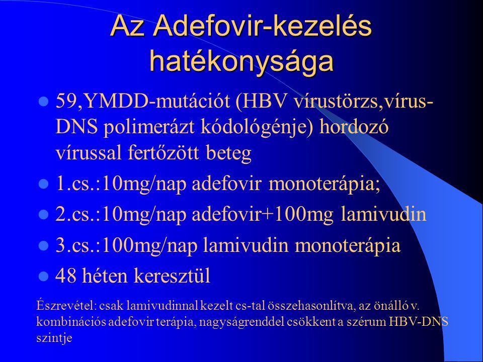 Az Adefovir-kezelés hatékonysága