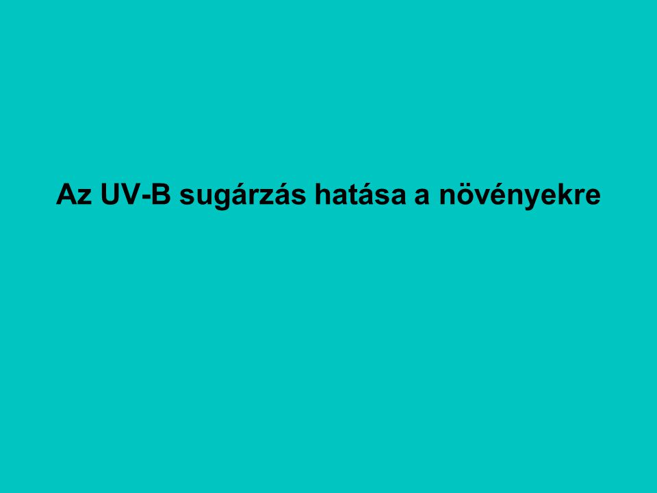 Az UV-B sugárzás hatása a növényekre