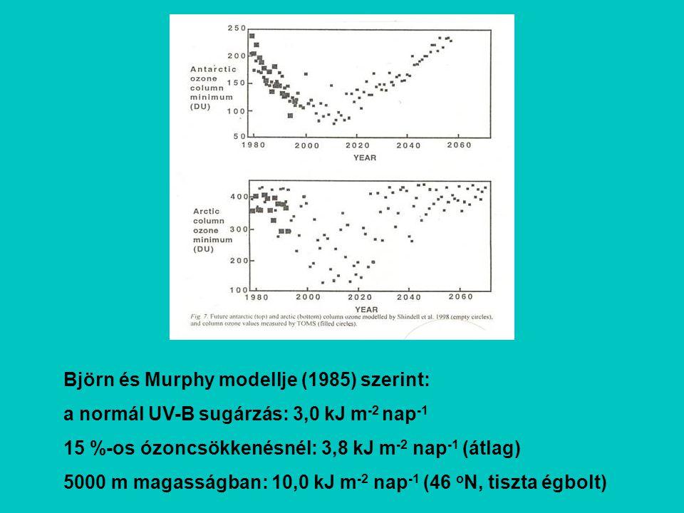 Björn és Murphy modellje (1985) szerint:
