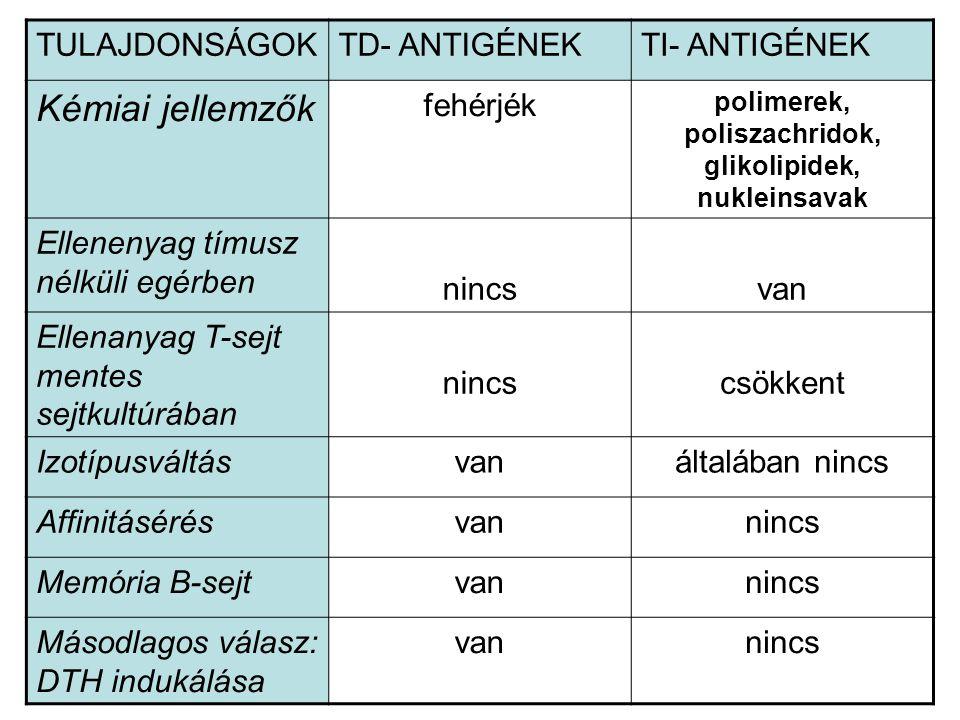 polimerek, poliszachridok, glikolipidek, nukleinsavak