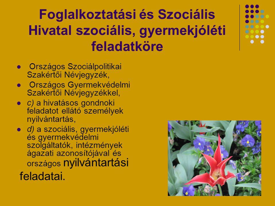 Foglalkoztatási és Szociális Hivatal szociális, gyermekjóléti feladatköre
