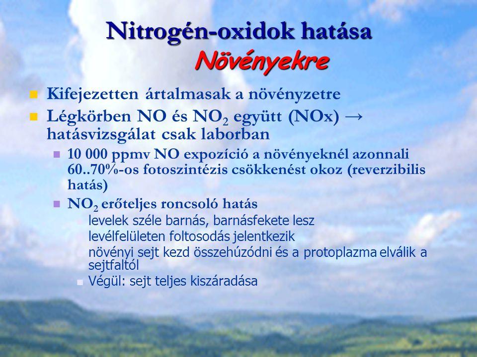 Nitrogén-oxidok hatása Növényekre