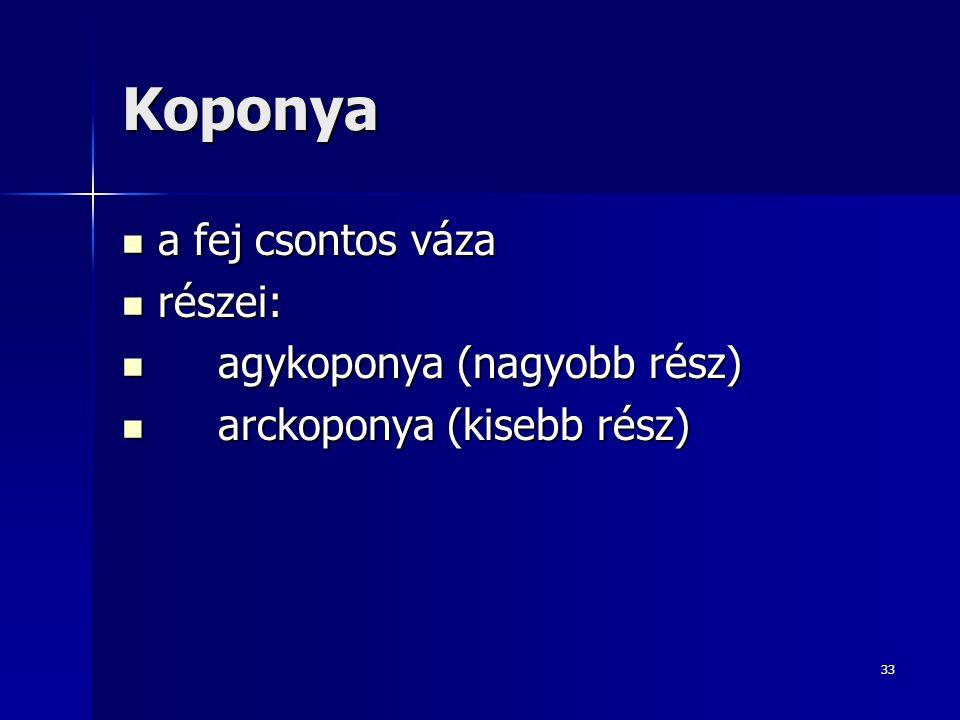 Koponya a fej csontos váza részei: agykoponya (nagyobb rész)