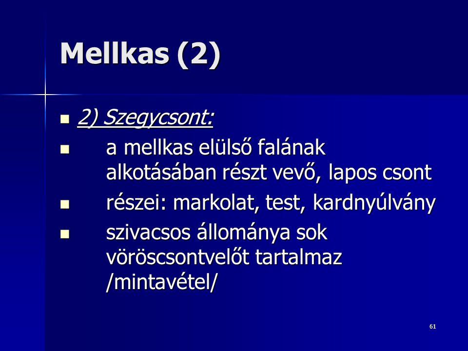 Mellkas (2) 2) Szegycsont:
