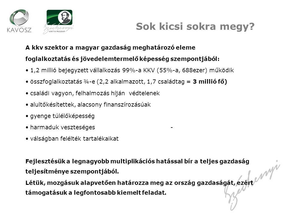 Sok kicsi sokra megy A kkv szektor a magyar gazdaság meghatározó eleme. foglalkoztatás és jövedelemtermelő képesség szempontjából: