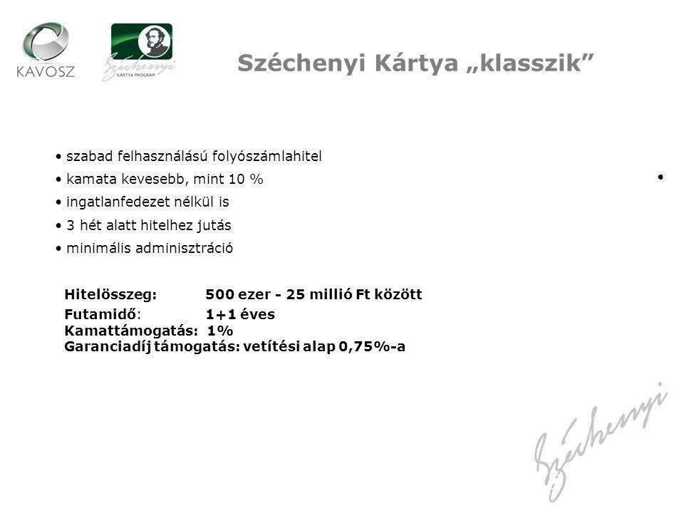 """Széchenyi Kártya """"klasszik"""