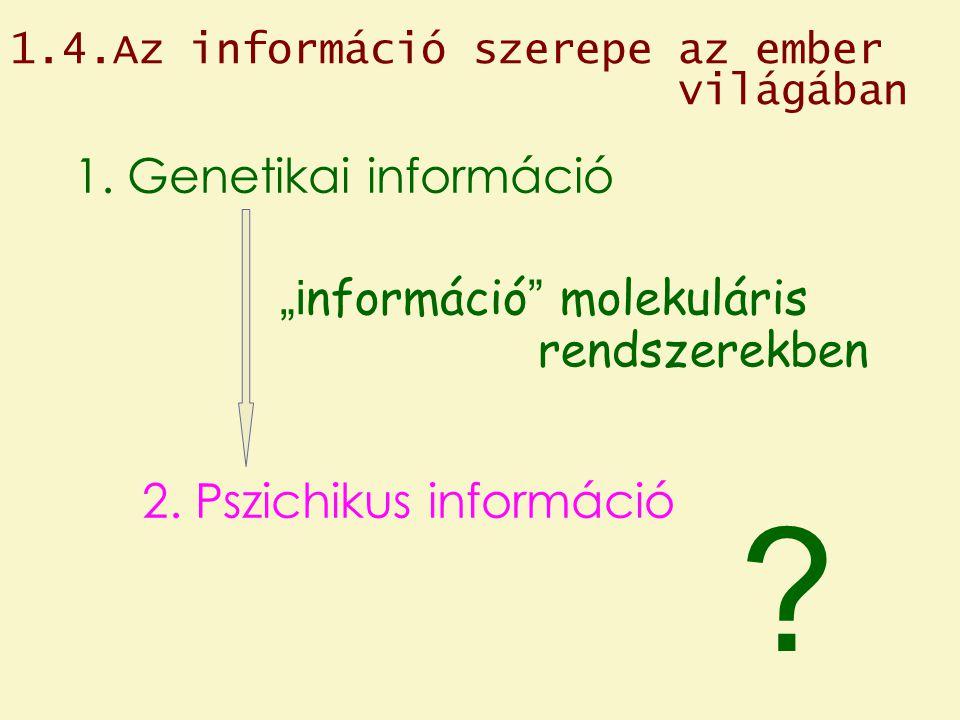 """1. Genetikai információ """"információ molekuláris rendszerekben"""