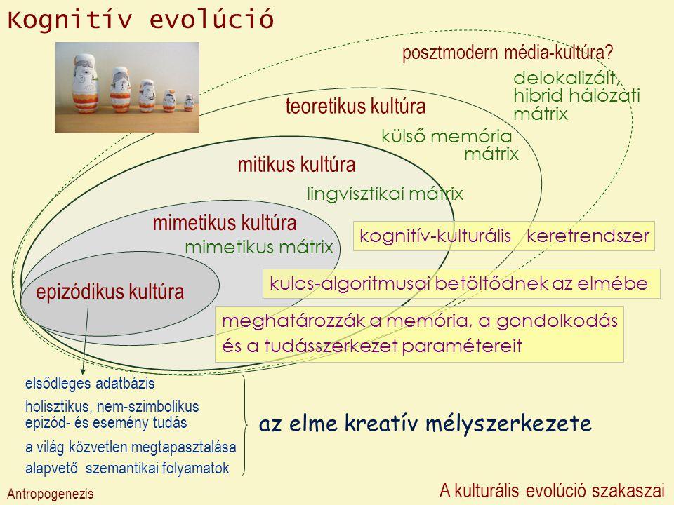 Kognitív evolúció teoretikus kultúra mitikus kultúra mimetikus kultúra