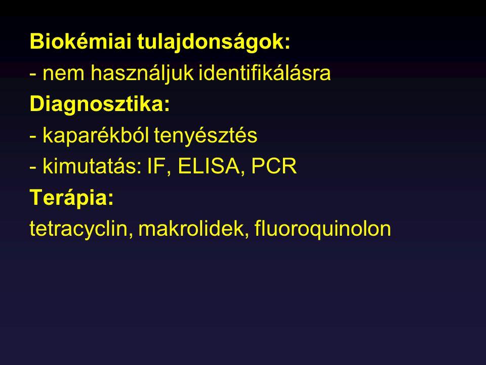 Biokémiai tulajdonságok: