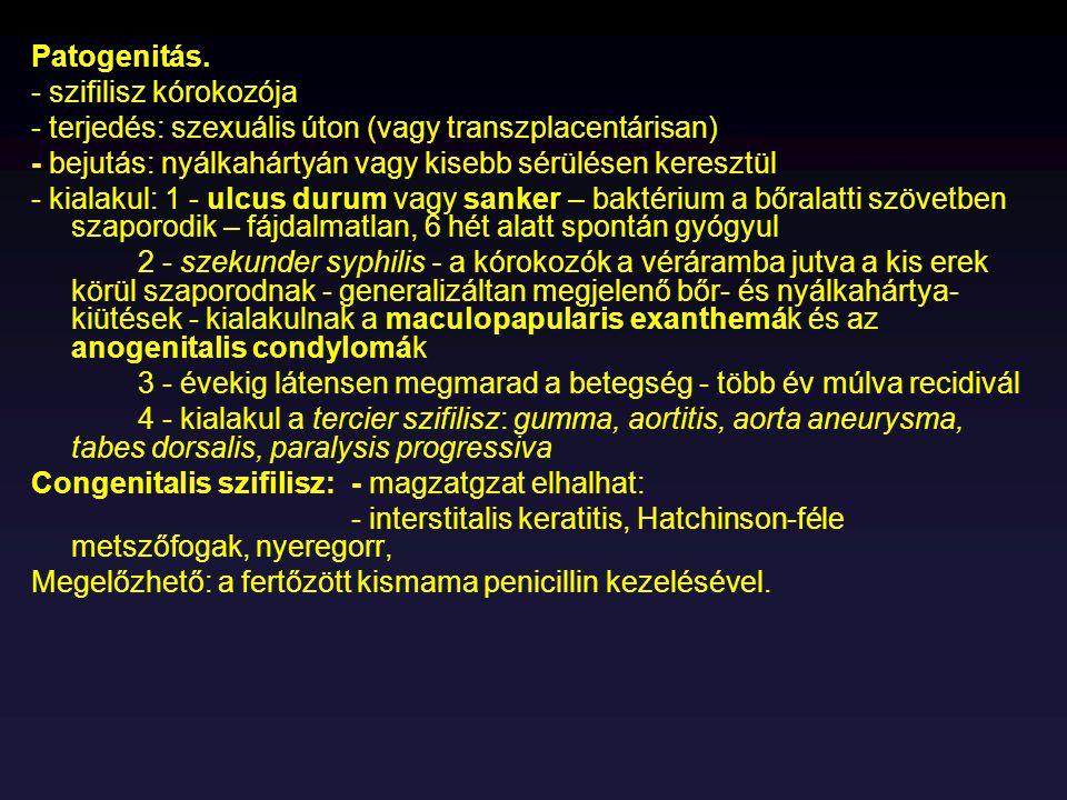 Patogenitás. - szifilisz kórokozója. - terjedés: szexuális úton (vagy transzplacentárisan) - bejutás: nyálkahártyán vagy kisebb sérülésen keresztül.