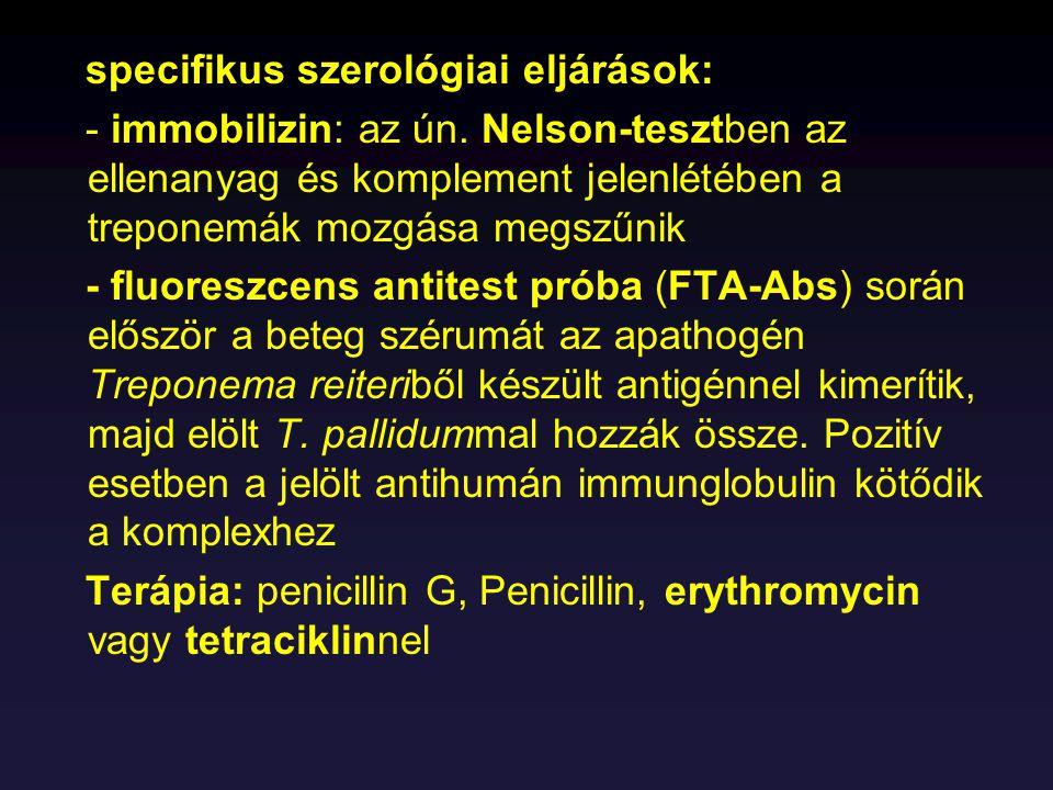 specifikus szerológiai eljárások: