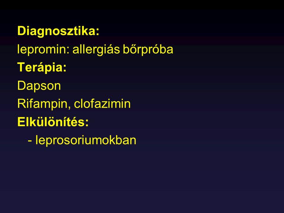Diagnosztika: lepromin: allergiás bőrpróba. Terápia: Dapson. Rifampin, clofazimin. Elkülönítés: