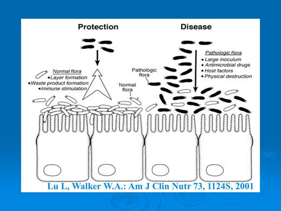 Lu L, Walker W.A.: Am J Clin Nutr 73, 1124S, 2001