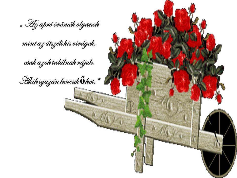 """"""" Az apró örömök olyanok mint az útszéli kis virágok,"""