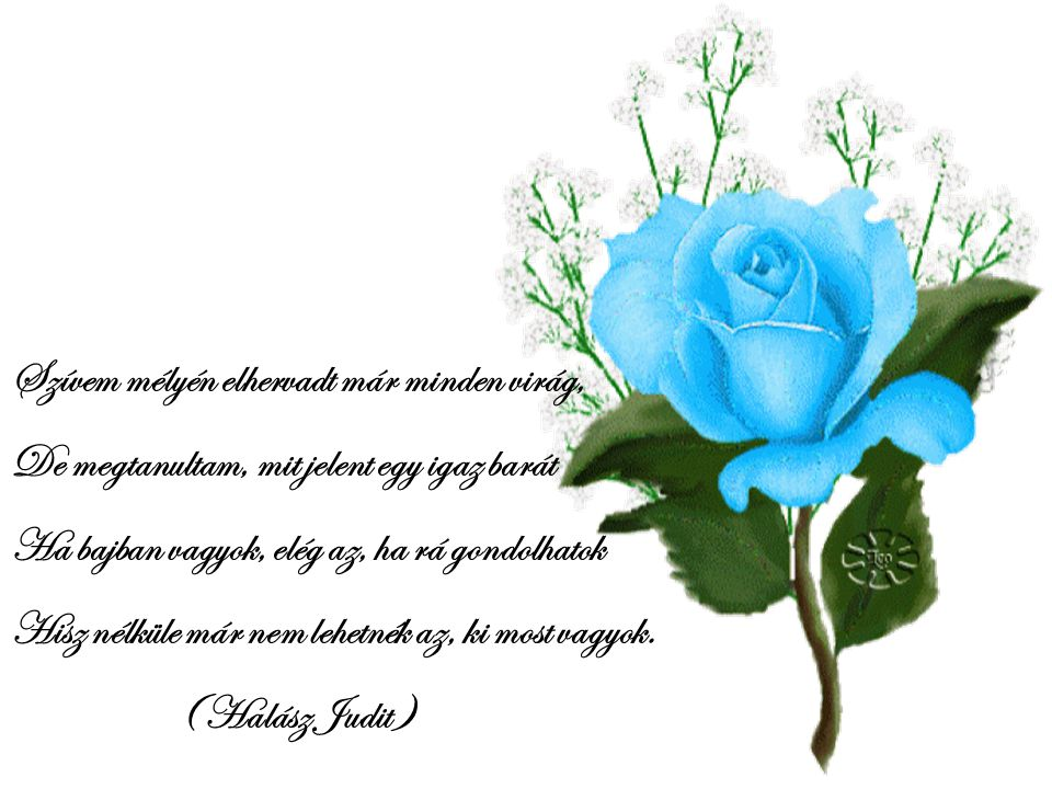 Szívem mélyén elhervadt már minden virág,
