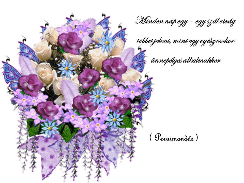 Minden nap egy – egy szál virág többet jelent, mint egy egész csokor