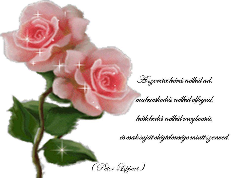 A szeretet kérés nélkül ad, makacskodás nélkül elfogad,