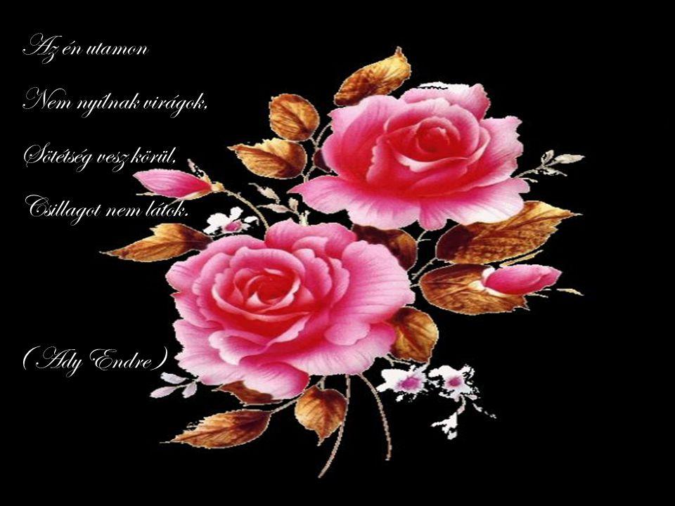 Az én utamon Nem nyílnak virágok, Sötétség vesz körül, Csillagot nem látok. ( Ady Endre )